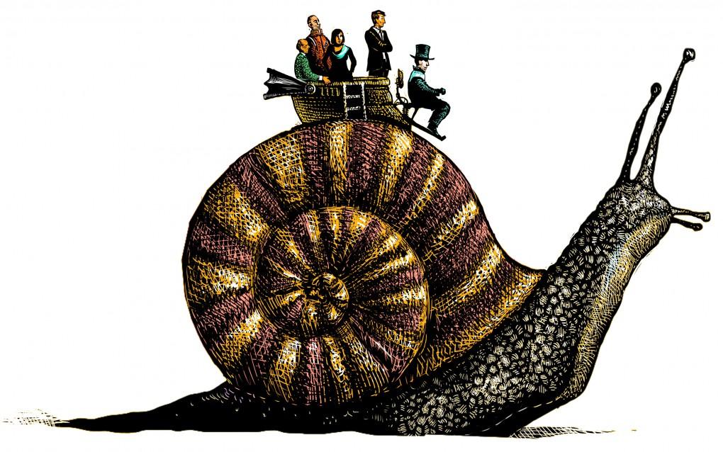 snail ok2